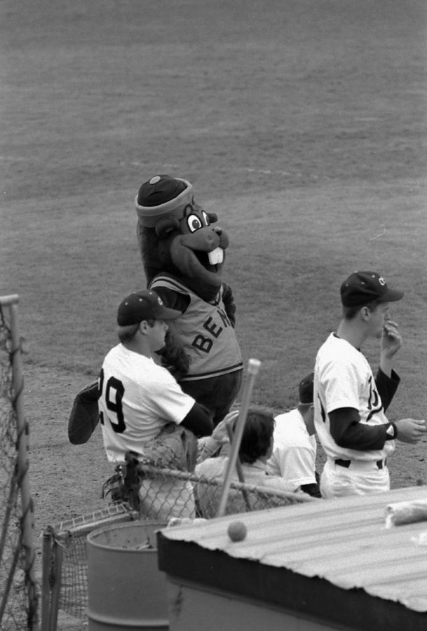Benny Beaver watches the baseball game in 1988. The original mascot outfit was created by Ken Austin in 1953.