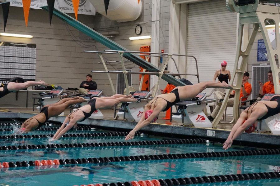 Swimmers dive into the Osborn Aquatic Center pool to race. Utah walked away from the meet with a 143-93 win for OSU's final regular season meet.