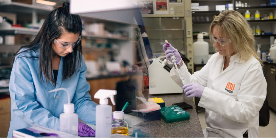 Undergraduate+microbiology+junior+Amy+Olyei+%28left%29+and+Assistant+Professor+Aleksandra+Sikora+%28right%29+working+in+their+respective+labs.+Women+have+been+historically+underrepresented+in+STEM+fields.