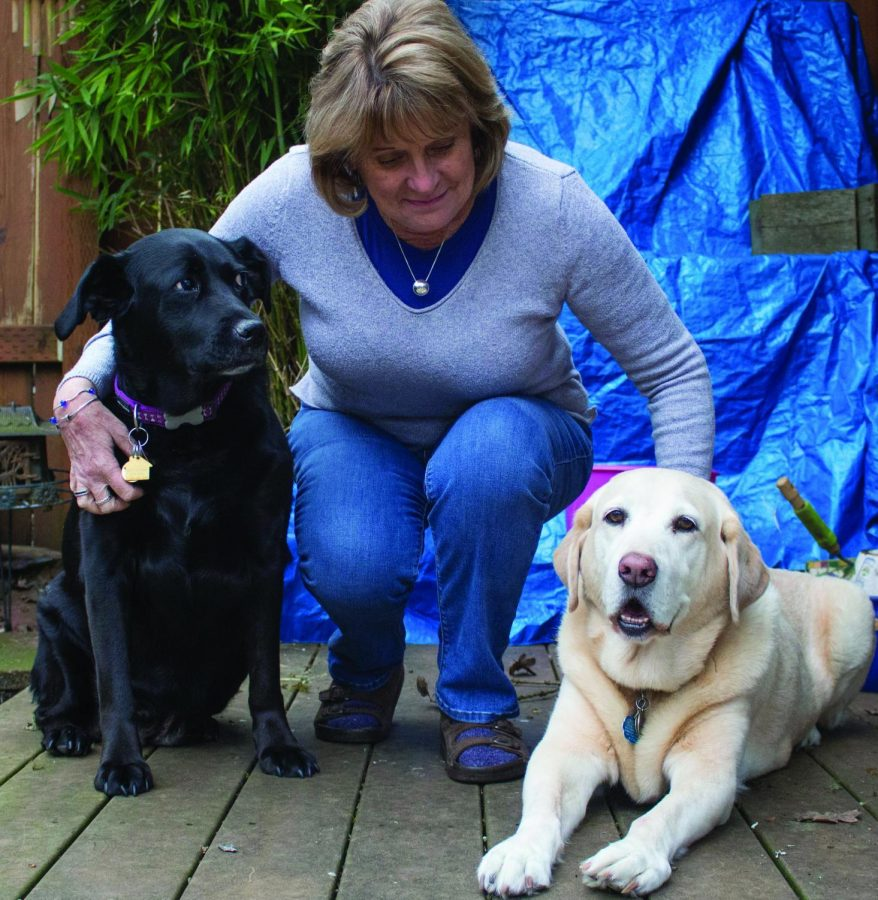 Jenny+Sullivan%2C+Foster+Home+Coordinator%2C+%28middle%29+of+the+Senior+Dog+Rescue+of+Oregon+with+Lady+%28left%29+and+Molly+%28right%29+at+her+home+in+Philomath.