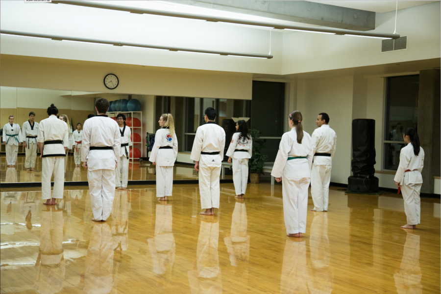 The+Taekwondo+Club+members+practice+at+Dixon+Recreation+Center+during+their+meeting.+The+club+meets+on+Mondays%2C+Wednesdays%2C+Thursdays+and+Fridays+every+week+in+Dixon+room+MP1.