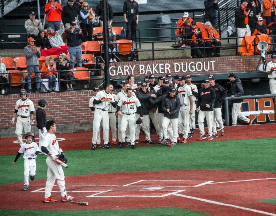 The OSU baseball team cheers from outside the dugout in a game against Arizona State University on April 29. The Beavers are currently 36-7-1 and 14-6-1 in conference play.