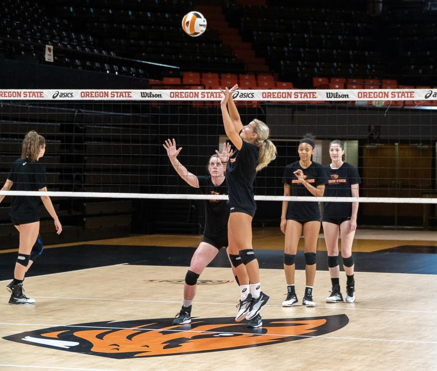 Senior+middle+blocker+Kory+Cheshire+watches+through+the+net+as+a+teammate+sets+the+ball+during+practice.