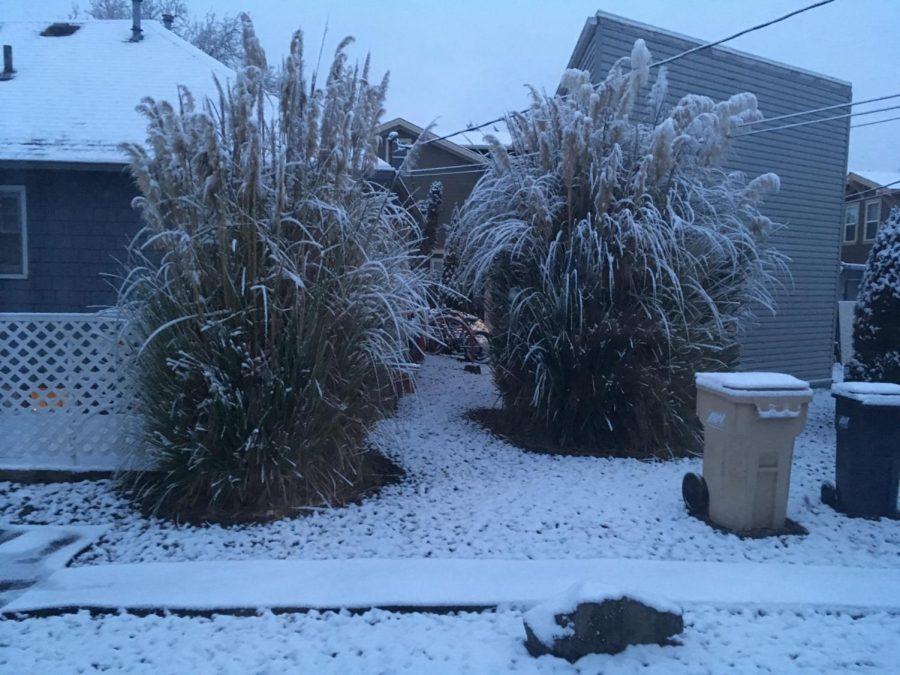 Corvallis+snow