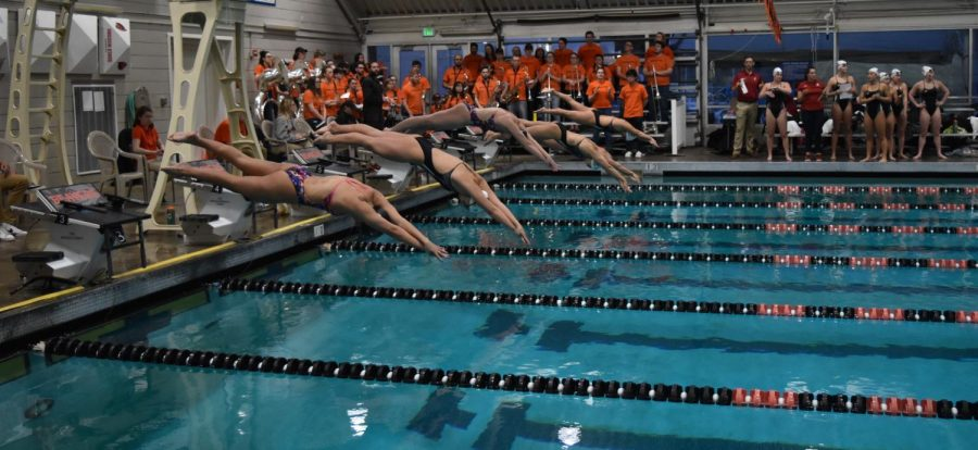 Swimmers+from+Oregon+State+and+Washington+State+take+their+dive+into+the+water+at+Osborn+Aquatic+Center.%C2%A0