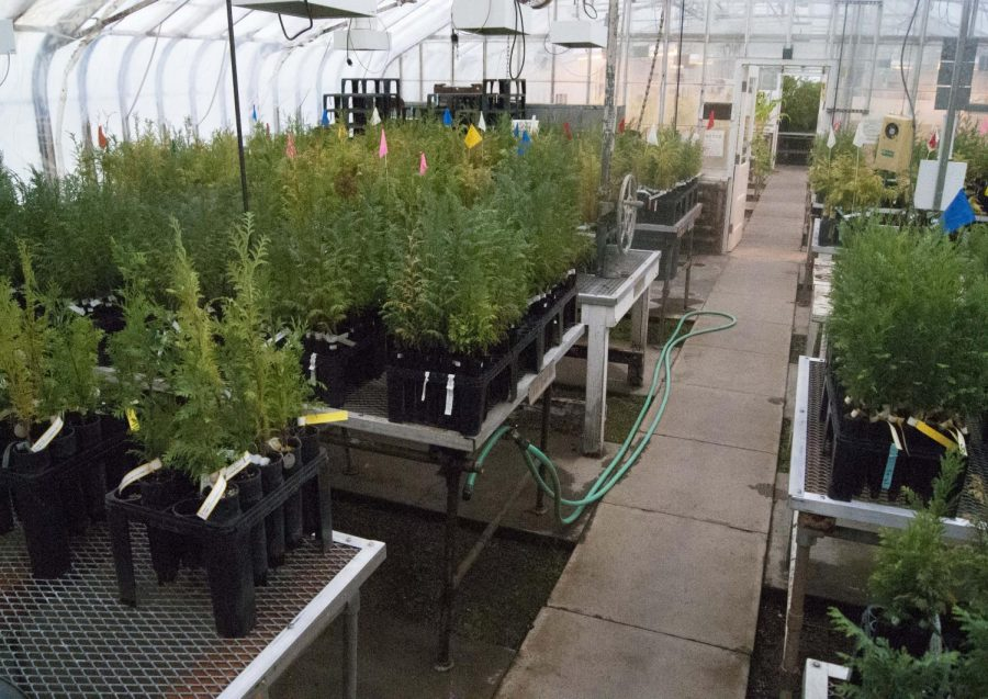 Conducting+agriculture+research+in+a+greenhouse+allowes+researchers+to+grow+almost+any+plant+that+grows+in+Oregon.+%C2%A0