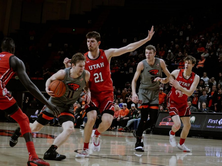 OSU+junior+guard+Zach+Reichle+pushes+past+Utah+sophomore+forward+Riley+Batin+on+his+way+to+the+basket+on+Feb.+13.+Reichle+played+a+total+of+25+minutes.
