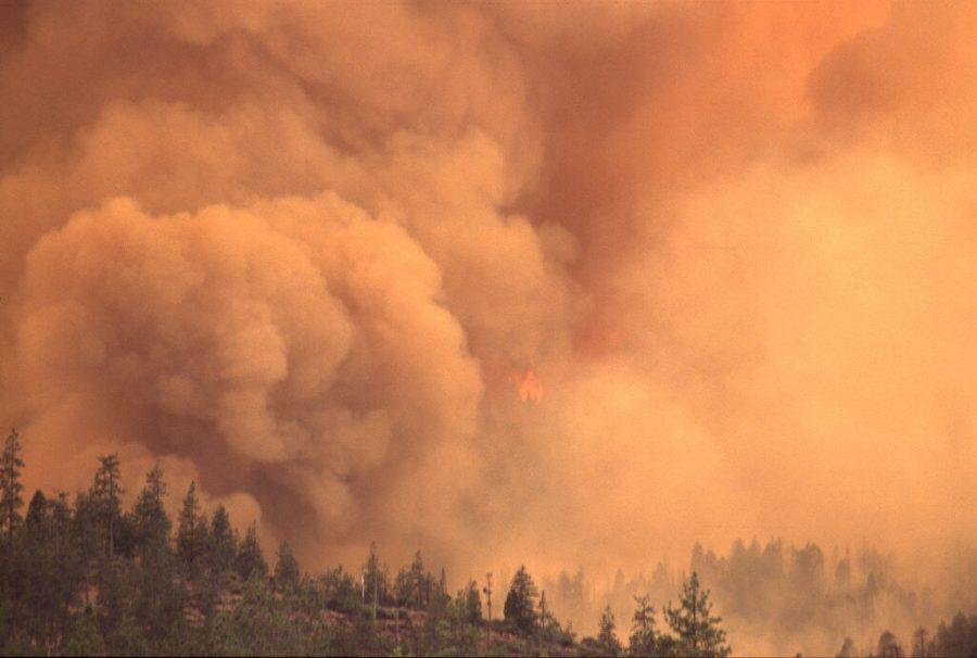 PNW wildfire