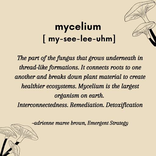 Mycelium+definition